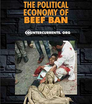 The Political Economy Of Beef Ban