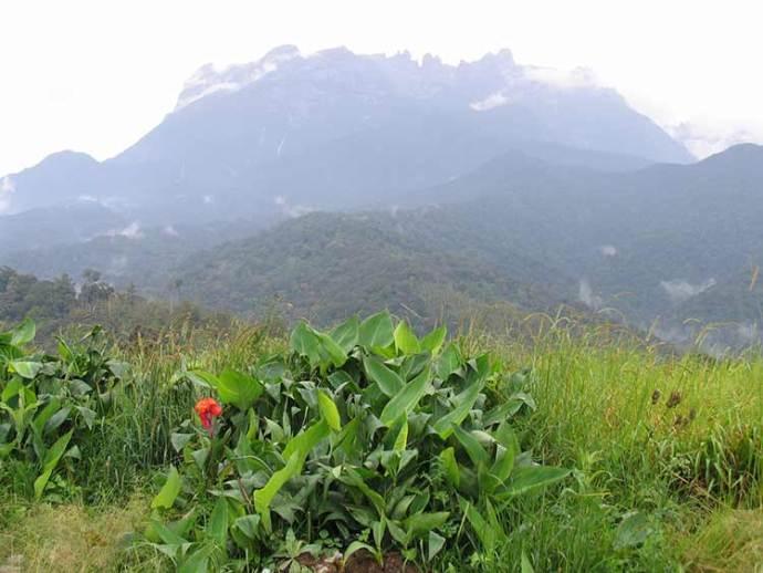 Mt. Kimabalu in Borneo, Malaysia