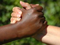 Statement And Counterstance: Racism In The USA