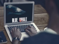 The Blue Whale Challenge