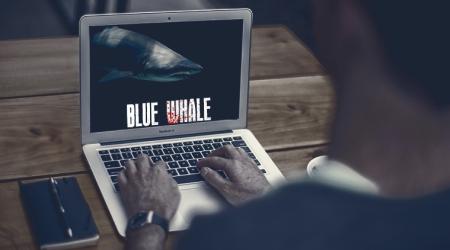 blue-whale_file