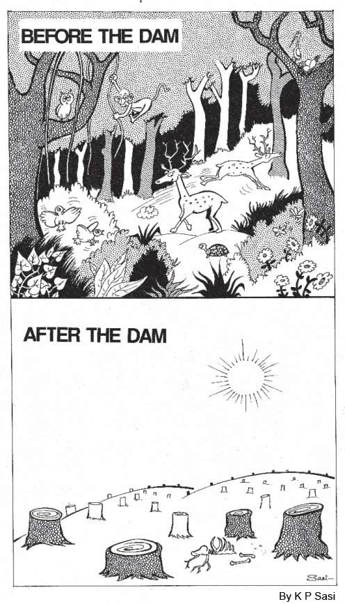dam-cartoon