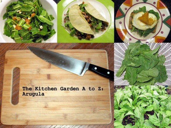 The Kitchen Garden A to Z: Arugula