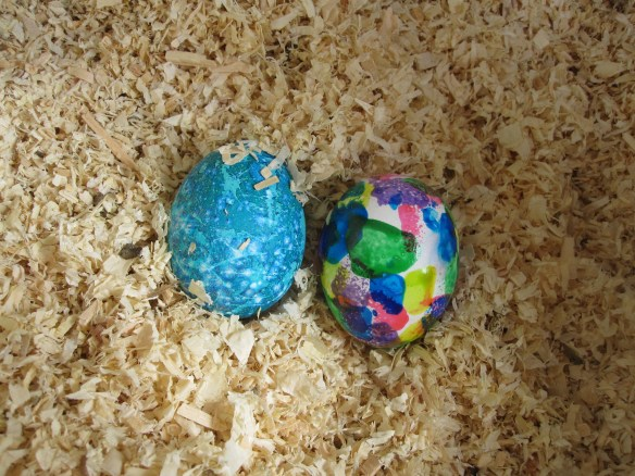 Easter eggs in a nesting box