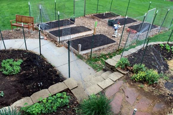 My kitchen garden in April