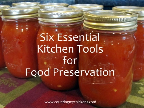 Six essential kitchen tools for food preservation