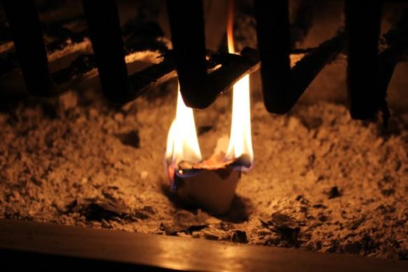 egg carton fire starter