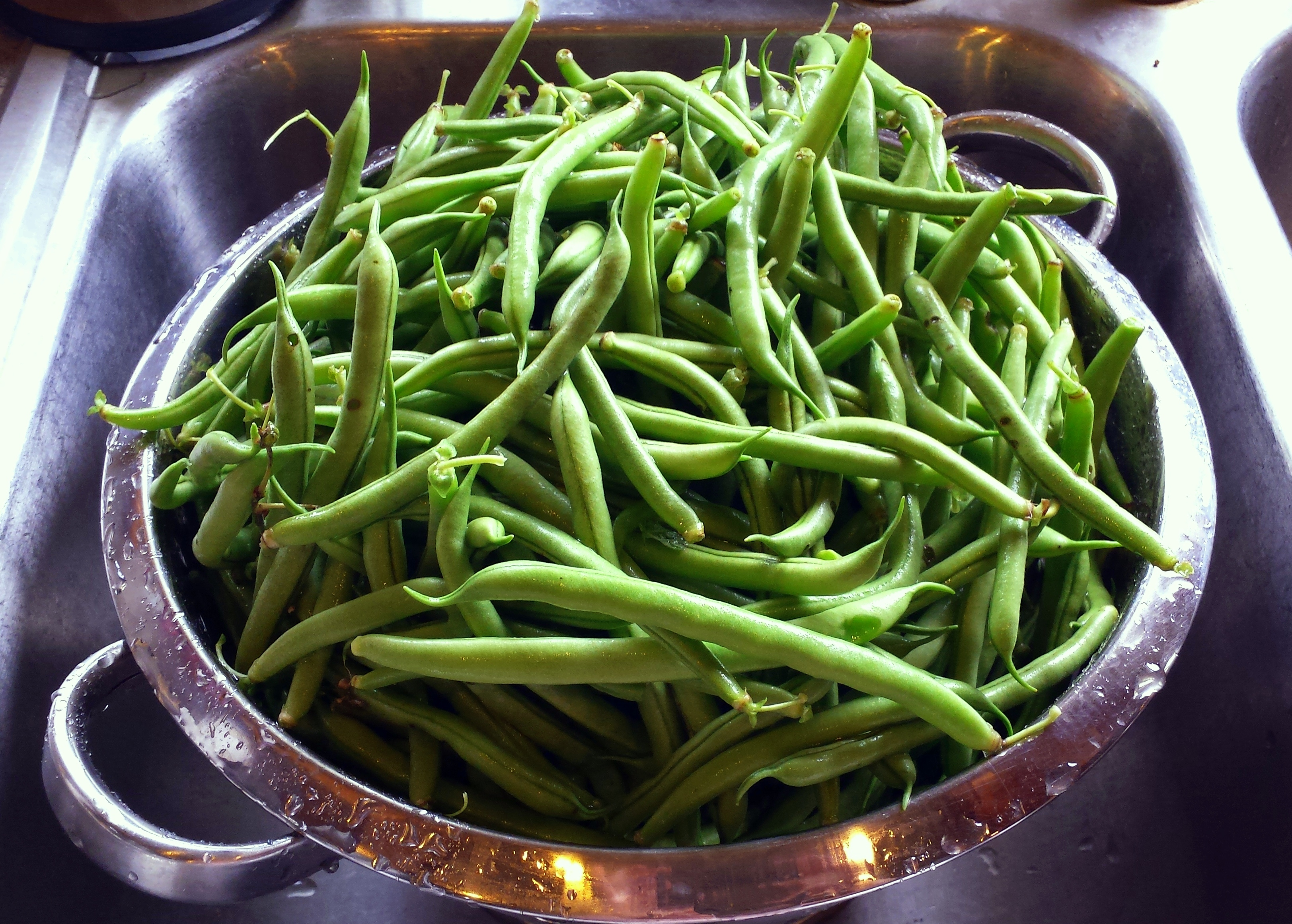 Kitchen Garden Produce The Kitchen Garden A To Z Beans Counting My Chickenscounting My
