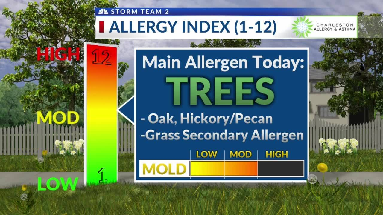 Pollen_Count_for_Tuesday__April_30th_7_20190430220648