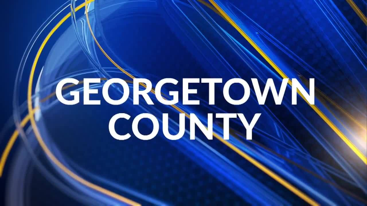 Georgetown_County_holds_hearing_over_cou_5_20190315203313