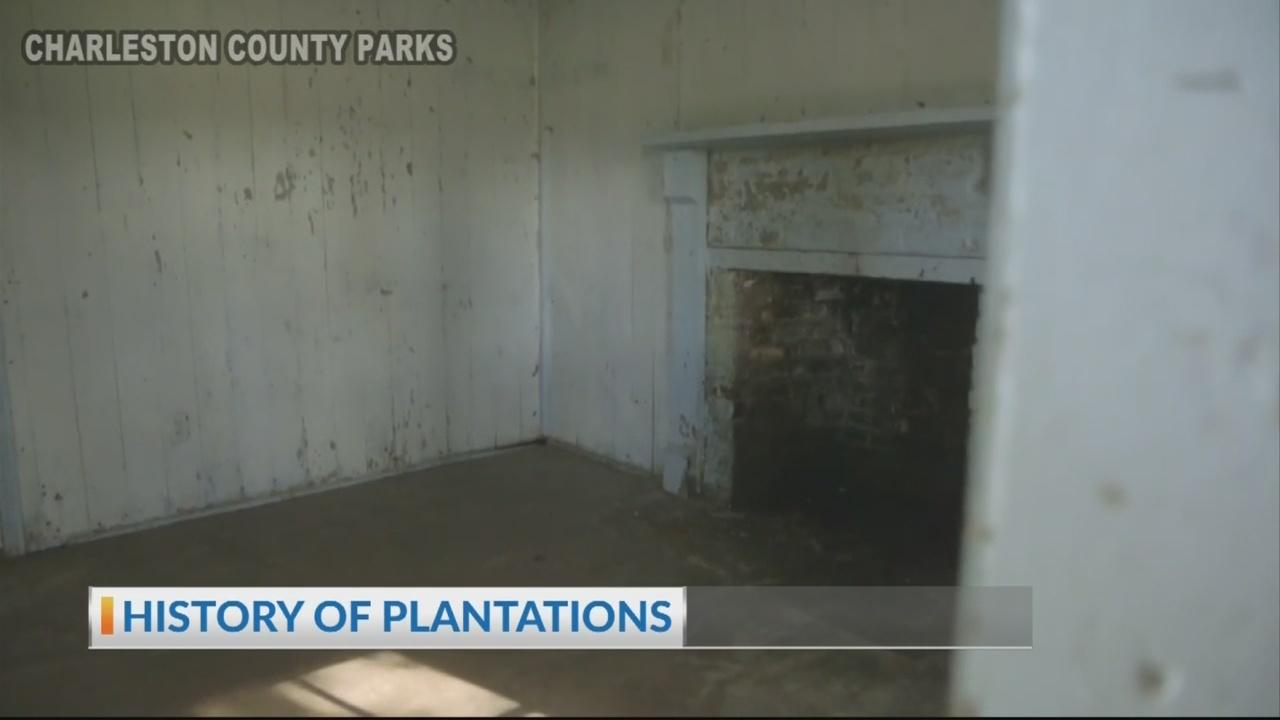 Plantations 1.5