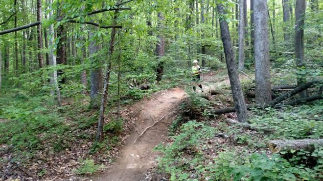 Misadventures in Running- Rattler Trail Run   Country Girl Gourmet