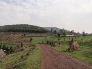 Approaching Emlembe from the village of Bulembu