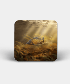 Country Images Personalised Custom Board Coaster Coasters Scotland Highland Common Carp Angling Fishing Gift Gifts