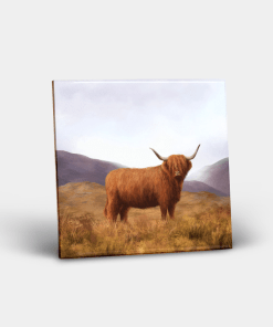 Country Images Personalised Custom Ceramic Tile Tiles Scotland Highland Collection Highland Cow Hairy Coo Nature Wildlife Gift Gifts