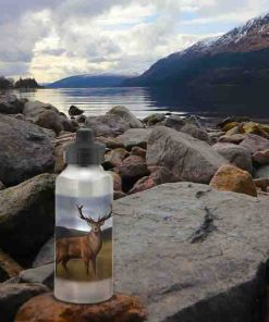 Highland Collection - Aluminium Reusable Environmentally Friendly Water Bottle (Stag) Personalised Gift