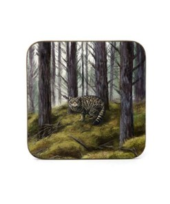 Highland Collection - Square (Wild Cat) Personalised Gift