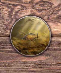 Round Tin (Common Carp) Personalised Gift