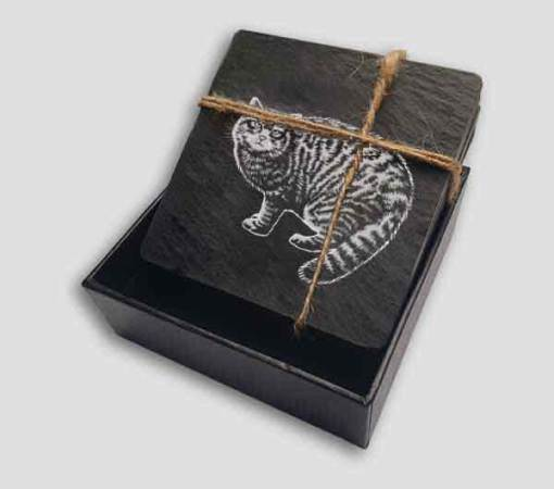 Slate Coaster Box Set Personalised Gift - Wild Cat Personalise Customise Custom Scotland Scottish Design