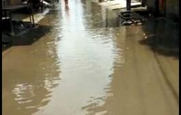बिहार /सिवान के कई वार्ड में पानी लगने की समस्या से परेशान लोगों ने किया सड़क जाम