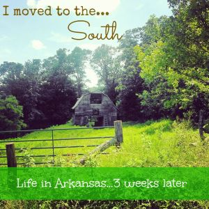 So…I Moved to the South