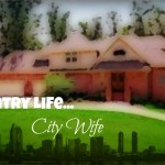 Update: Country Life City Wife