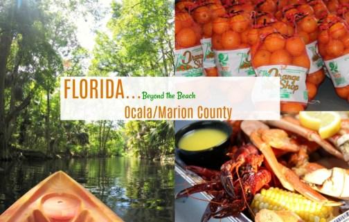 ocala marion county florida