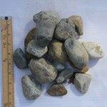 """2"""" River Stone"""