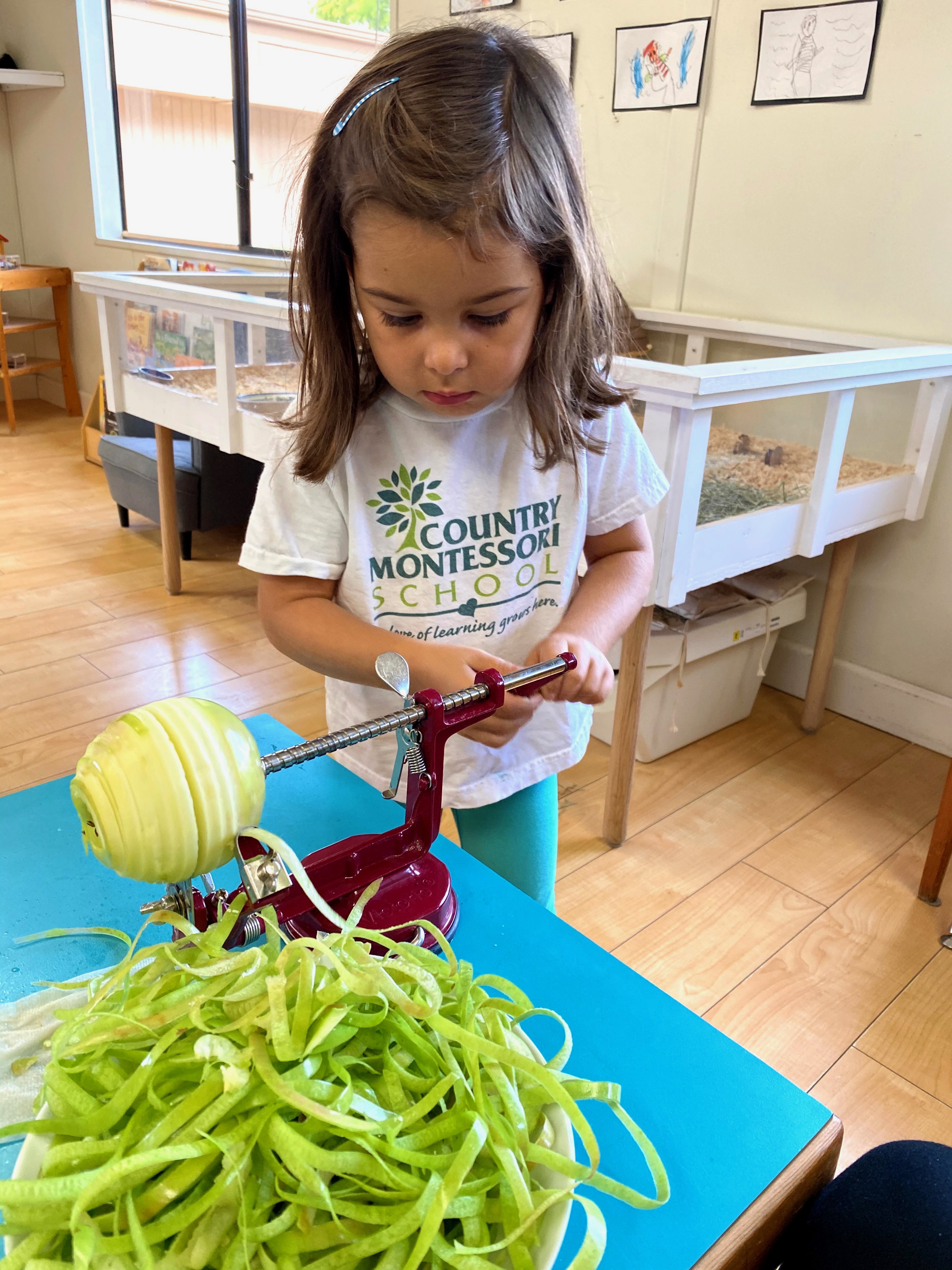 Montessori Preschool Amp Kindergarten Curriculum