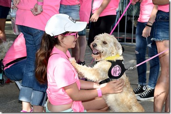 NASHVILLE, TN - JUNE 08:  Guests attend the Miranda MuttNation March at Nissan Stadium on June 8, 2017 in Nashville, Tennessee.  (Photo by Rick Diamond/Getty Images)