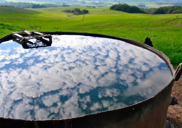 countrywomanpaints.com-sky in water trough
