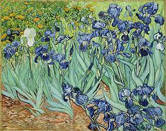 "van gogh 'irises"" painted a year before his death in 1890"