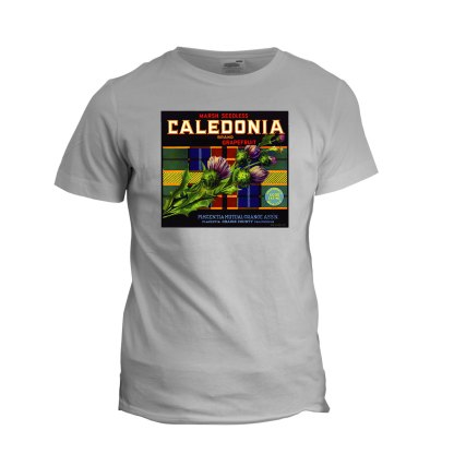 Caledonia Grapefruit Tee (sport grey)