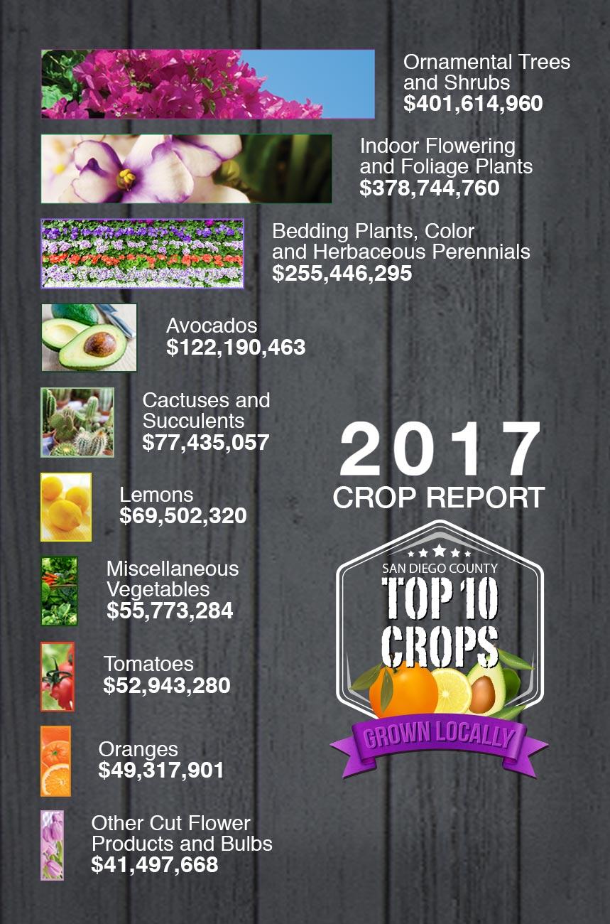 2017 Crop Report Top 10 Crops