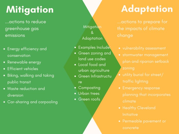 Venn diagram explaining mitigation and adaptation - the differences and similiarities