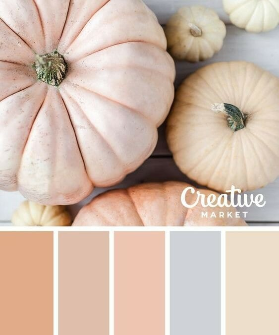 fall color combinations to get us excited about fall gathered by CountyRoad407.com #fall #fallcolors #fallcolorideas