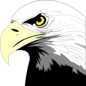 Eagle Clip art from picgifs.com