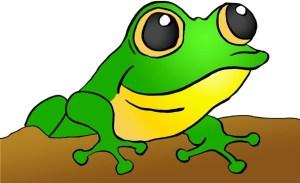 Frog Image (Doodle Blog) - Frog Acronym