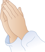 Praying Hands - Prayers for the 5 killed in the helicopter crash