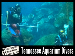 Tennessee Aquarium Divers