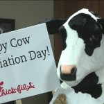 Cow Appreciation Day