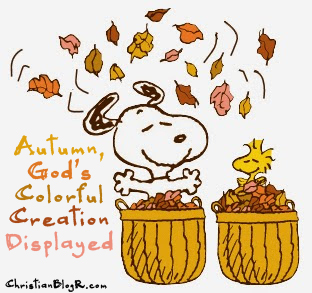 Autumn God's Colorful Creation Displayed