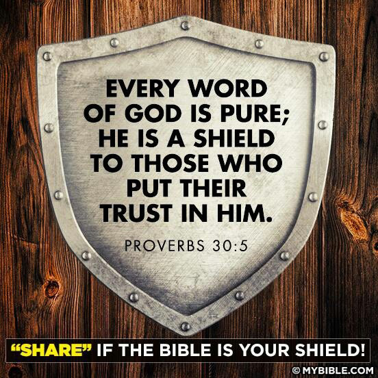 """""""Every word of God is pure; He is a shield to those who put their trust in Him."""" Proverbs 30:5-6"""