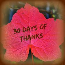 30 Days of Thanksgiving Day 20