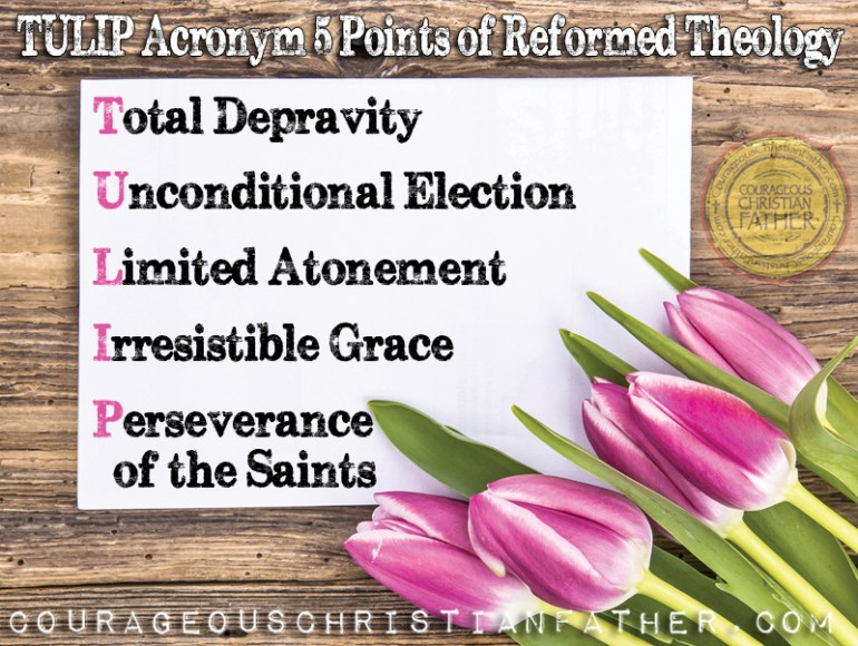 TULIP Acronym for the 5 Points Reformed Theology (Total Depravity, Unconditional Election, Limited Atonement, Irresistible Grace, Perseverance of the Saints) #TULIP