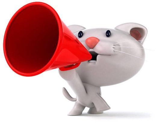 cat-megaphone-1925999