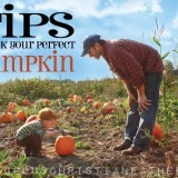 Tips to pick your perfect pumpkin #Pumpkin