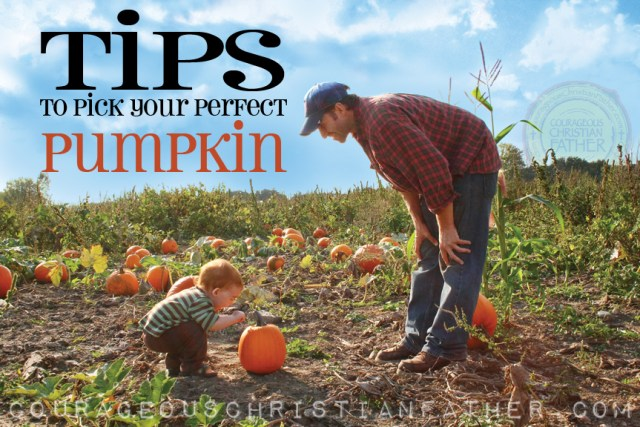 Tips to pick your perfect pumpkin #Pumpkin