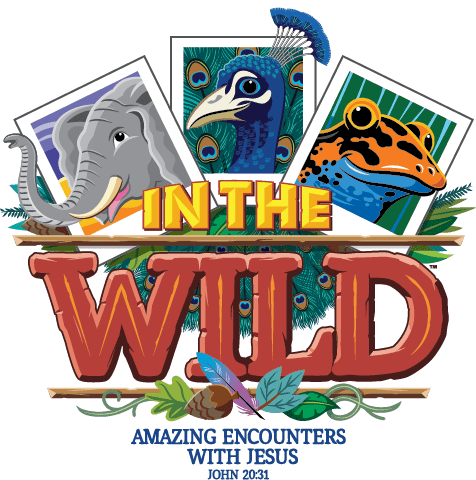 In the Wild VBS for 2019 Announced from Lifeway