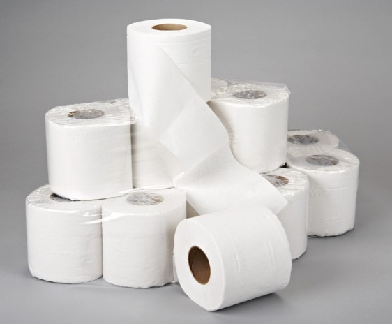 Toilet Paper Day